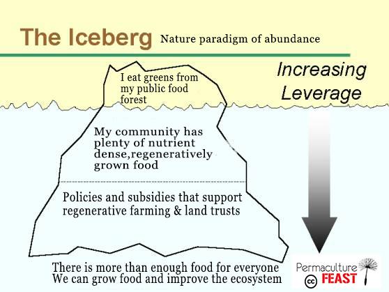 iceberg-abundance