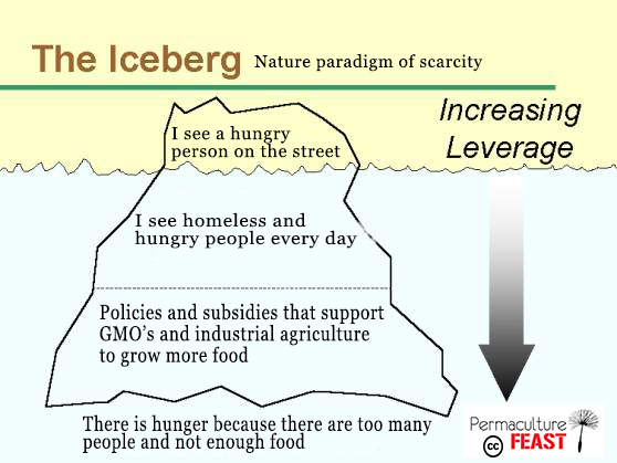 icebery-scarcity